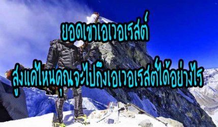 ยอดเขาเอเวอเรสต์ สูงแค่ไหนคุณจะไปถึงเอเวอเรสต์ได้อย่างไร
